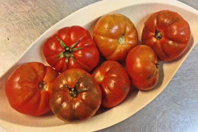 tomaten-raf